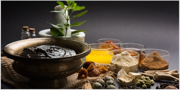 Ayurvedic Health Supplements The True Supplements to Life