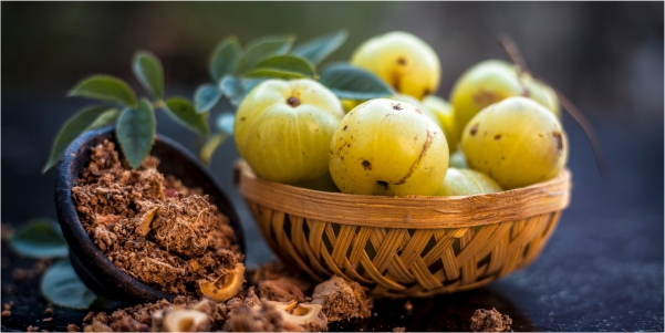 Amla The Superherb for Skin Body and Health
